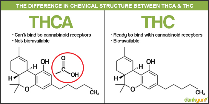 THCA & THC Chemical Structure - Before & After Decarbing Cannabis