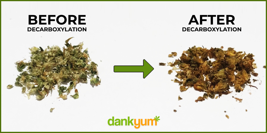 Weed Before and After Decarboxylation (Decarbing)