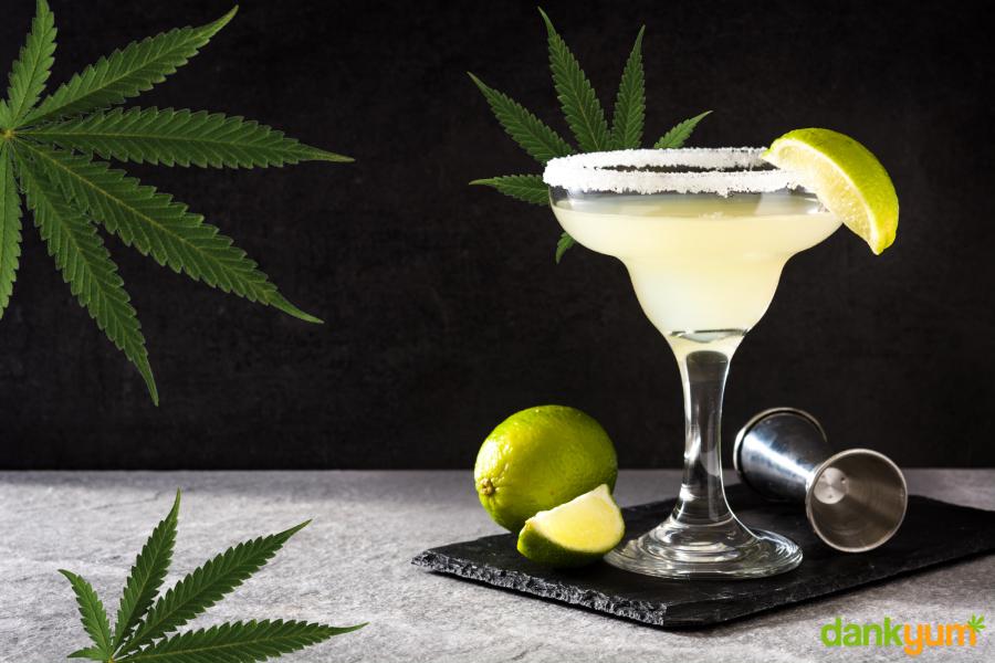 How To Make a Cannabis Margarita Cocktail