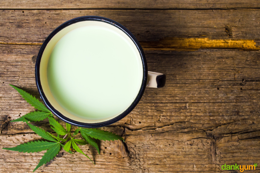 Cannabis milk with leaves around the cup