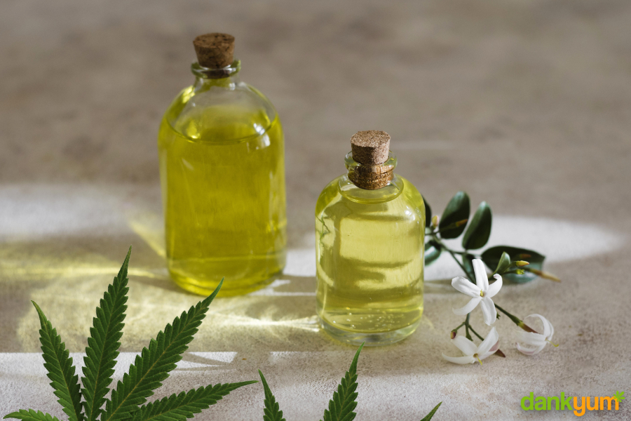 Cannabis Olive Oil Recipe