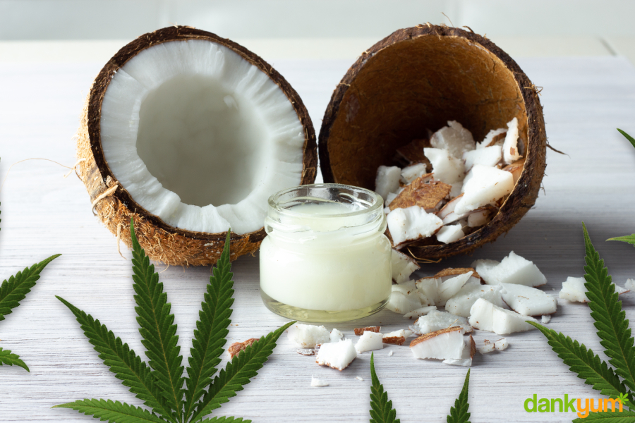 about to make cannabis infused coconut oil
