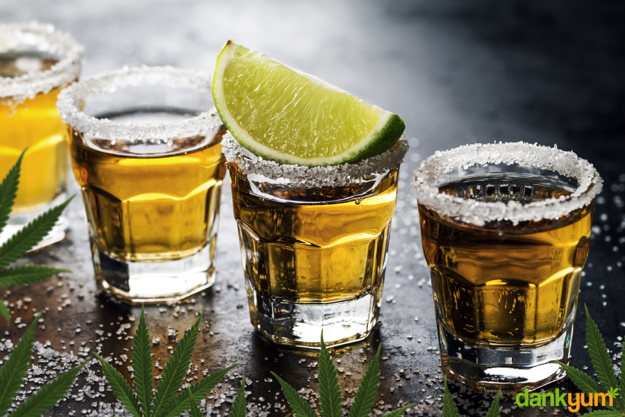 how to make weed tequila